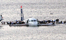 Гуси утопили самолет