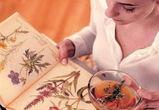 Лечение травами повышает риск рака почек и мочевого пузыря