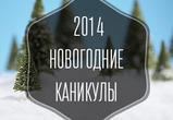 Как провести новогодние каникулы 2014 в Воронеже
