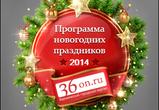 Новый год 2014 в Воронеже — развлекательная программа