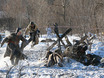Реконструкция битвы за Воронеж 98474