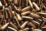 У воронежского браконьера отобрали 3,5 кило пороха и 300 патронов