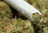Полицейские задержали подозреваемого в продаже наркотиков