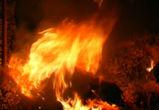 Уволенный воронежец из мести спалил сена на 1,7 млн рублей