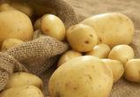 В Воронежскую область не пустили партию картофеля с Украины