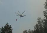 Лесные пожары Кожевенный кордон