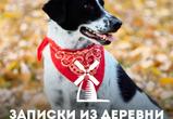 Записки из деревни: история одной собаки