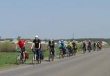 Воронежский Крым для велосипедистов