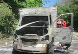 На трассе в Воронежской области по неизвестным причинам дотла сгорел грузовик
