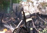 В Воронеже рядом с жилыми домами загорелись сараи