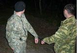 В Воронежском заповеднике поймали двоих браконьеров