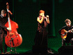 Концерт Криштина Бранку в парке рамонского замка 108154