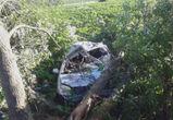 Водитель разбился насмерть под Воронежем, протаранив дерево