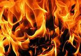 Пожарные спасли 6 человек из горящего дома в Воронеже