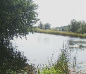 Под Рамонью из реки достали тело мужчины