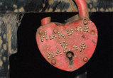Пауки на набережной пугают влюбленных воронежцев ФОТО