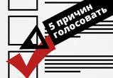 Голос здравого смысла или пять причин принять участие в выборах