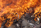 23 килограмма героина и других наркотиков сожгли в Воронеже
