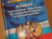 В Воронеже директ...