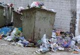 УК Центрального района Воронежа наказана за невывоз мусора