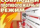 На «Балтике-Воронеж» и трех других крупных заводах нарушались нормы безопасности