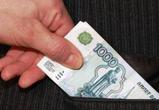 Директор лесничества под Воронежем попался на взятке в 150 000 рублей