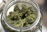 Более килограмма замороженных наркотиков нашли у селянина под Воронежем