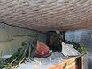 """Будни Новороссии: руины  Кировска после обстрела украинскими """"Градами"""" 120364"""