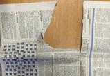 6,5 материалов хочет разместить Гордума в воронежской газете