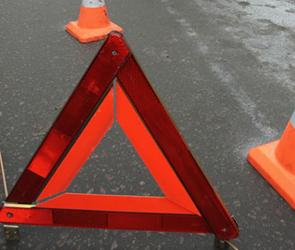 В Воронеже машина на переходе сбила мужчину с ребенком
