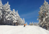 "Горнолыжный курорт  ""Хвалынский"" – ваш активный зимний отдых"