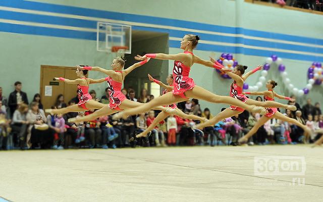 Воронежские школы спортивной гимнастики для детей