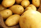 Воронежскую область признали самым «картофельным» регионом