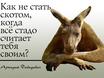 Афоризмы Давидовича 122669