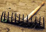 Под Воронежем наркоман дрался с полицейскими лопатой и граблями