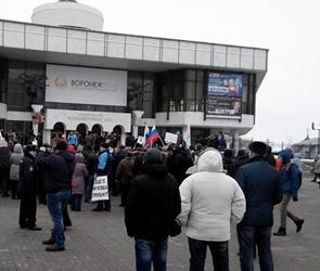 В Воронеже на марше «Весна» участников акции закидали зелёнкой