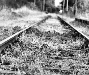В Лискинском районе под колесами поезда погиб неизвестный мужчина