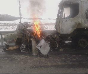 В Панинском районе «Хендай» врезался в фуру и загорелся - водитель погиб (ФОТО)