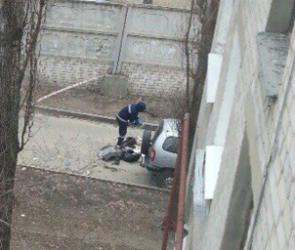 Труп мужчины, завернутый в бумагу, нашли на улице Маршака (ФОТО)