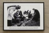 Воронежцам показали фотографии из концлагеря «Ламздорф»