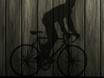 В Воронеже велоси...