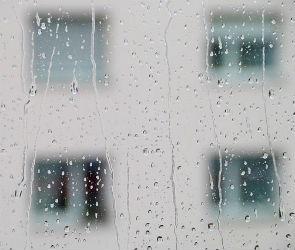 Пасмурная погода в Воронеже продержится не меньше недели