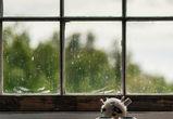 В Воронеже двухлетний мальчик выпал из окна четвертого этажа