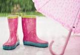 В выходные воронежцев ждут  дожди, грозы  и теплая погода