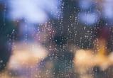 Выходные в Воронеже будут теплыми и дождливыми