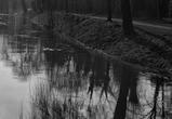 В Воронежской области в реке Битюг нашли тело мужчины