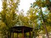 Парк-отель «ТайGA» - комфортный отдых на свежем воздухе 129449