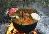 Шпаргалка грибника: какие ядовитые грибы растут в Воронежской области