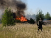 В Воронеже горят пустыри и лес  130461