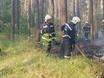 В Воронеже горят пустыри и лес  130462